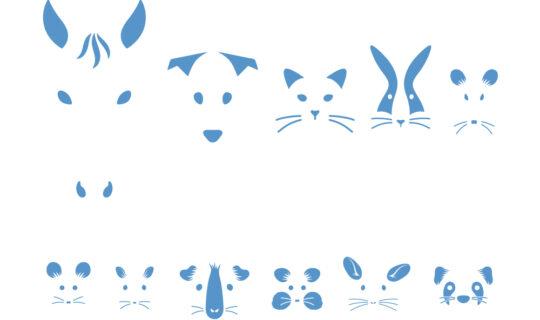 esccap_animals